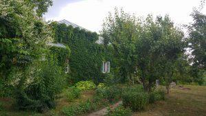 Casa Memorială Gellu Naum, Comana