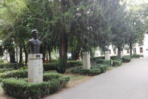 Alei Park, Giurgiu