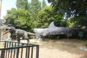 Natura Dino Park, Constanța