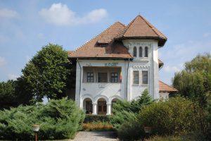 The Memorial House of Nicolae Titulescu, Nicolae Titulescu