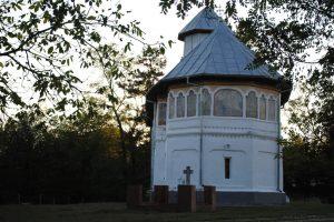 Biserica de Lemn Cuvioasa Paraschiva, Topana, Gojgărei