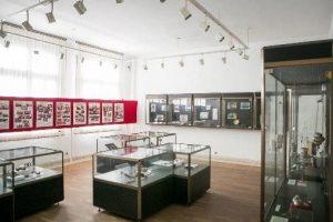 Исторически Музей, Чипровци