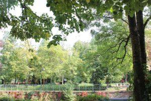Varshets Park, Varshets