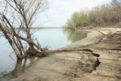 Защитена местност Калимок – Бръшлен