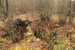 Cetatea medievală Kartal Kale