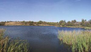 Barajul Darovets, Debelets