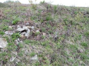 """Cetatea Romană """"Ad Marum"""", Koshava"""