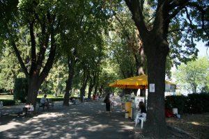 Крайдунавска Градска Градина, Видин