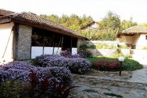 Анината Къща, Стакевци