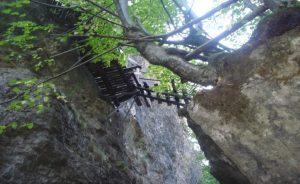 """Vratsa Eco Trail """"Borov Kamak"""", Zgorigrad"""